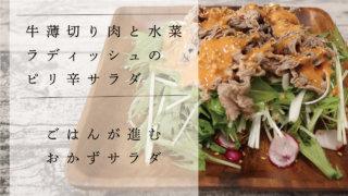 牛薄切り肉と水菜とラディッシュのピリ辛おかずサラダのレシピを紹介!